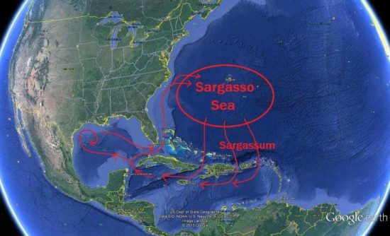 Discouraging forecast for the Caribbean – The Yucatan Times