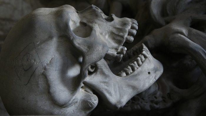 Skeletons of 1,500-year-old pair of Maya kings discovered